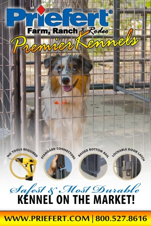 POSTER_Kennels_Lifestyle_2X3